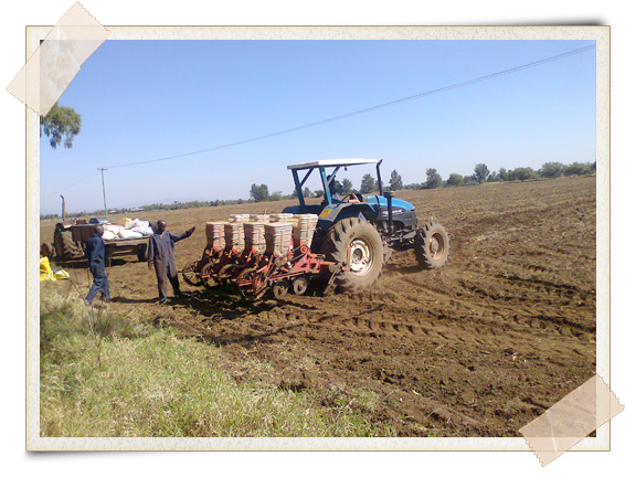 large scale farm changes perceptions of organic farming practices    in kenya  most farmers are skeptical of organic farming practices and their relevance to modern day agriculture  however  if these farmers only looked
