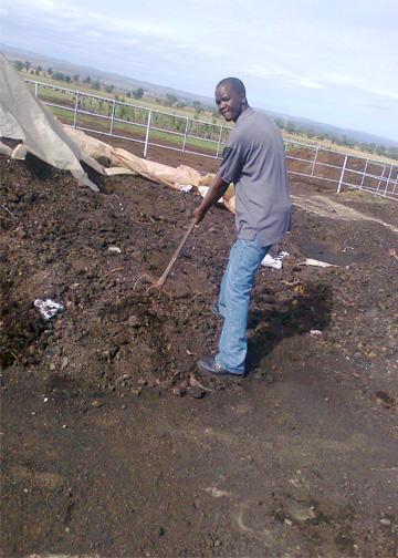 Organic farming essays