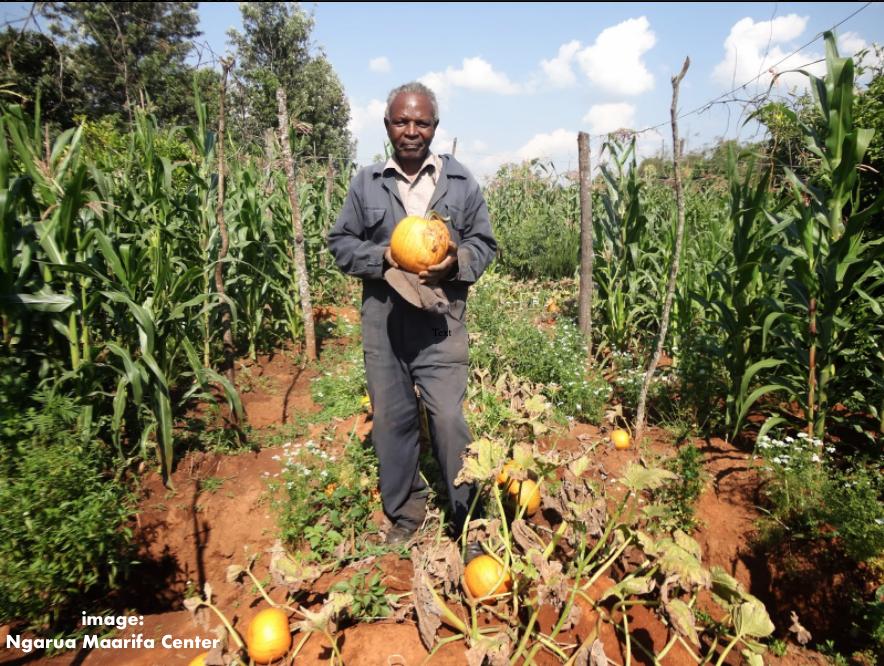 Francis Kiarahu_Rainwater Harvesting